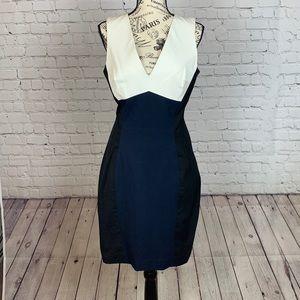 Banana Republic Blue/Black Sloan Dress